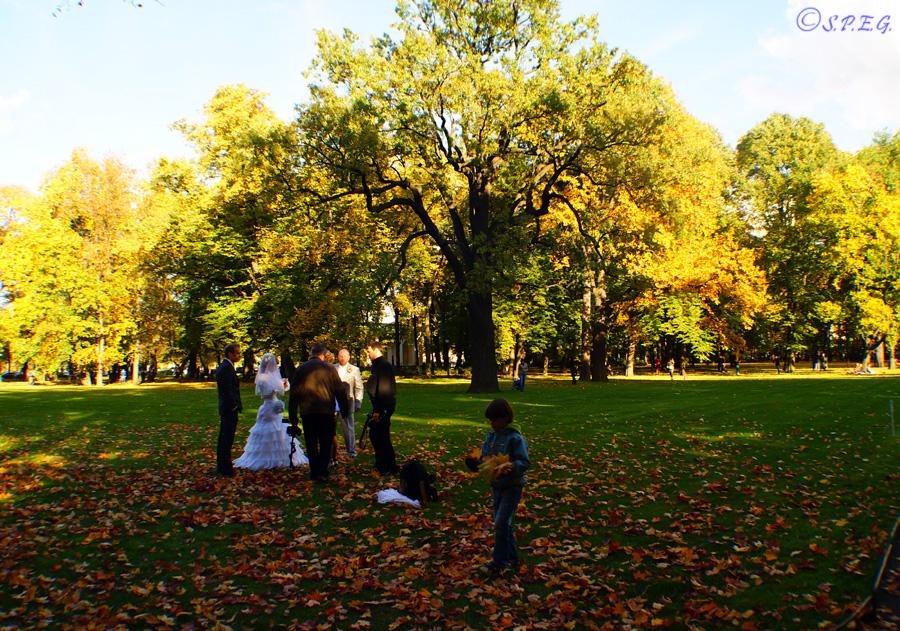 The Mikhailovsky Park during Autumn, St Petersburg, Russia.