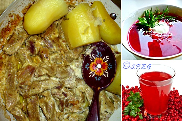 Different types of Russian Food.