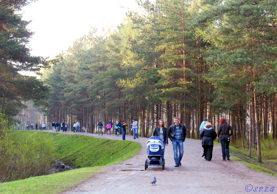 Sosnovka Park in the Vyborg side of St Petersburg, Russia.