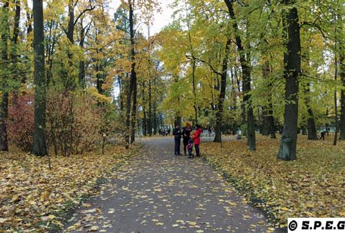 Autumn in St Petersburg, Russia