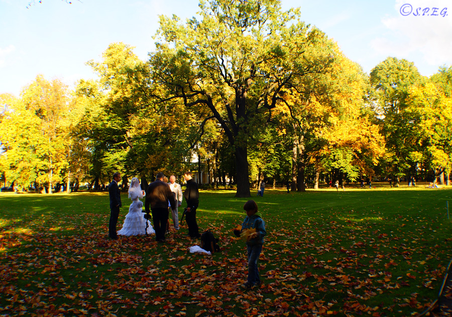 The Mikhailovsky Park during Autumn, St Petersburg, Russia.