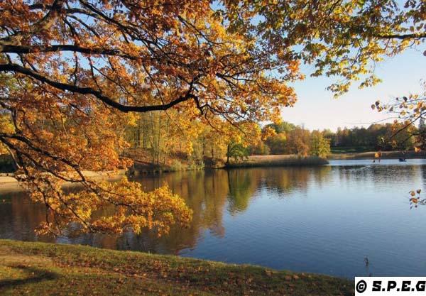 The Oranienbaum Park