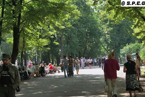 Summer in St Petersburg