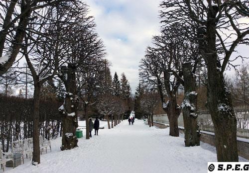 Winter in St Petersburg, Russia